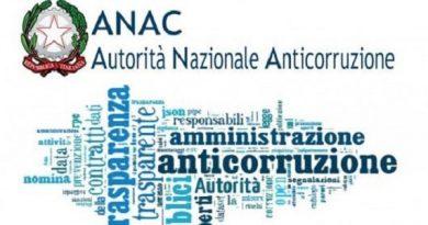 Anomalia e Qualificazione nei servizi e forniture: RACCOLTA PARERI ANAC